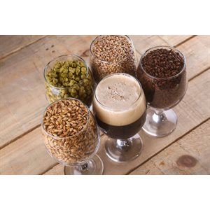 Beer Making Course in English - Next date: TBD